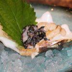 シャコ貝のお造り